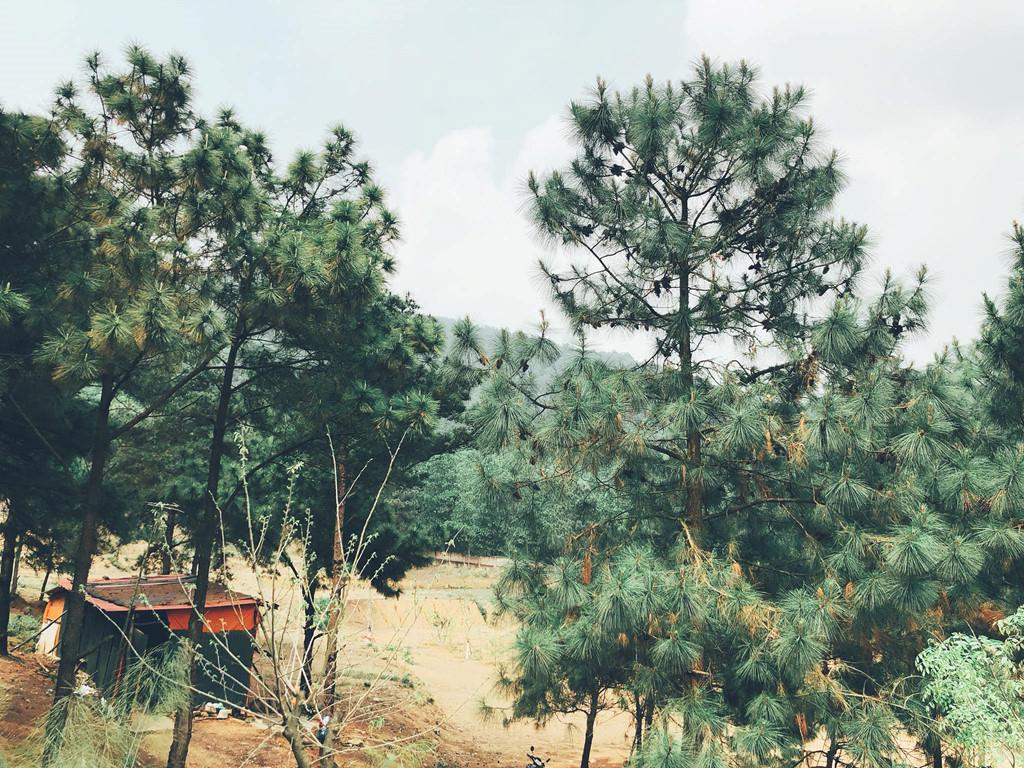 Trai nghiem hoang so trong khu Nha ben rung U Lesa hinh anh 18