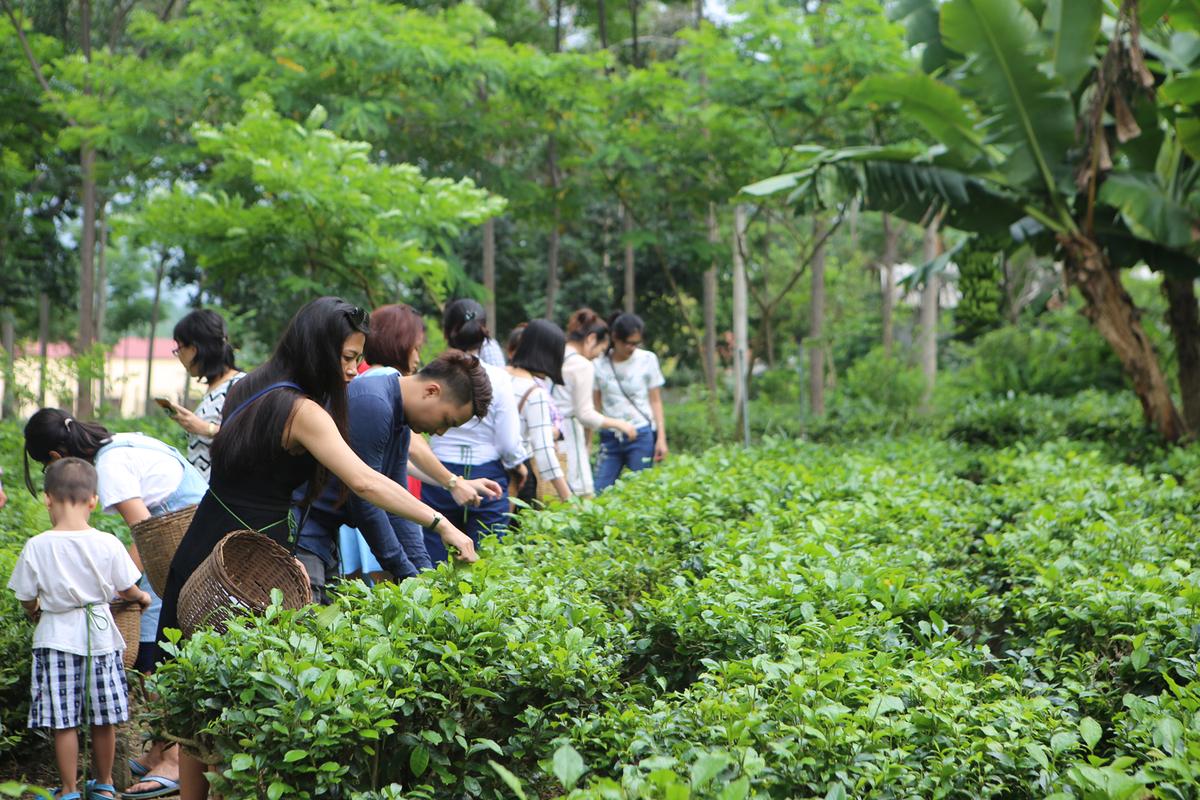 5 trải nghiệm cuối tuần gần Hà Nội cho người bận rộn