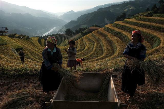La Pán Tẩn là nơi có nhiều ruộng bậc thang nhất ở Mù Cang Chải với 700 ha ruộng bậc thang.