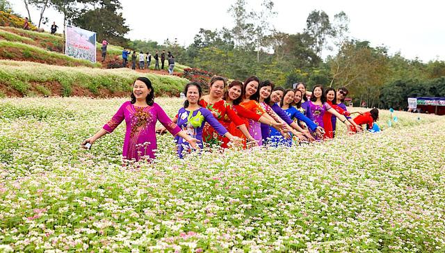 Nhiều du khách trong huyện, ngoại tỉnh cũng đổ về cánh đồng hoa tam giác mạch để ghi lại những khoảnh khắc có một không hai này.
