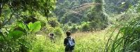 SUP Tour (CB06) - Chinh phục rừng già Cát Bà và Vịnh Lan Hạ