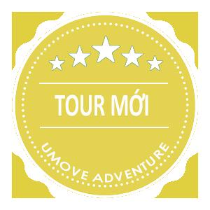 Tour mới