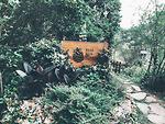 Trải nghiệm hoang sơ trong khu Nhà bên rừng U Lesa