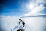 Tư vấn trang phục phù hợp cho hành trình Bắc Cực