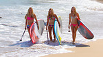 Những điều cần biết về SUP (Stand up Paddle Board)
