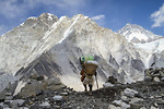 Nepal cấm du khách leo núi một mình lên đỉnh Everest