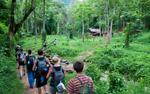 Kinh nghiệm đi rừng an toàn nhất
