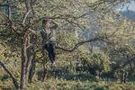 Mường Lống – Điểm thu hút dân phượt mới ở Nghệ An