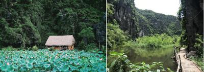 24 giờ thả hồn vào thiên nhiên cùng sông nước Ninh Bình